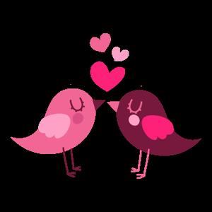 vtáky Láska